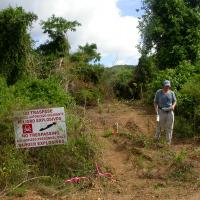 EM-31 Survey on Vieques Island
